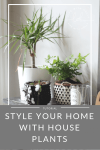 Style Your Home Using House Plants by Life with Holly
