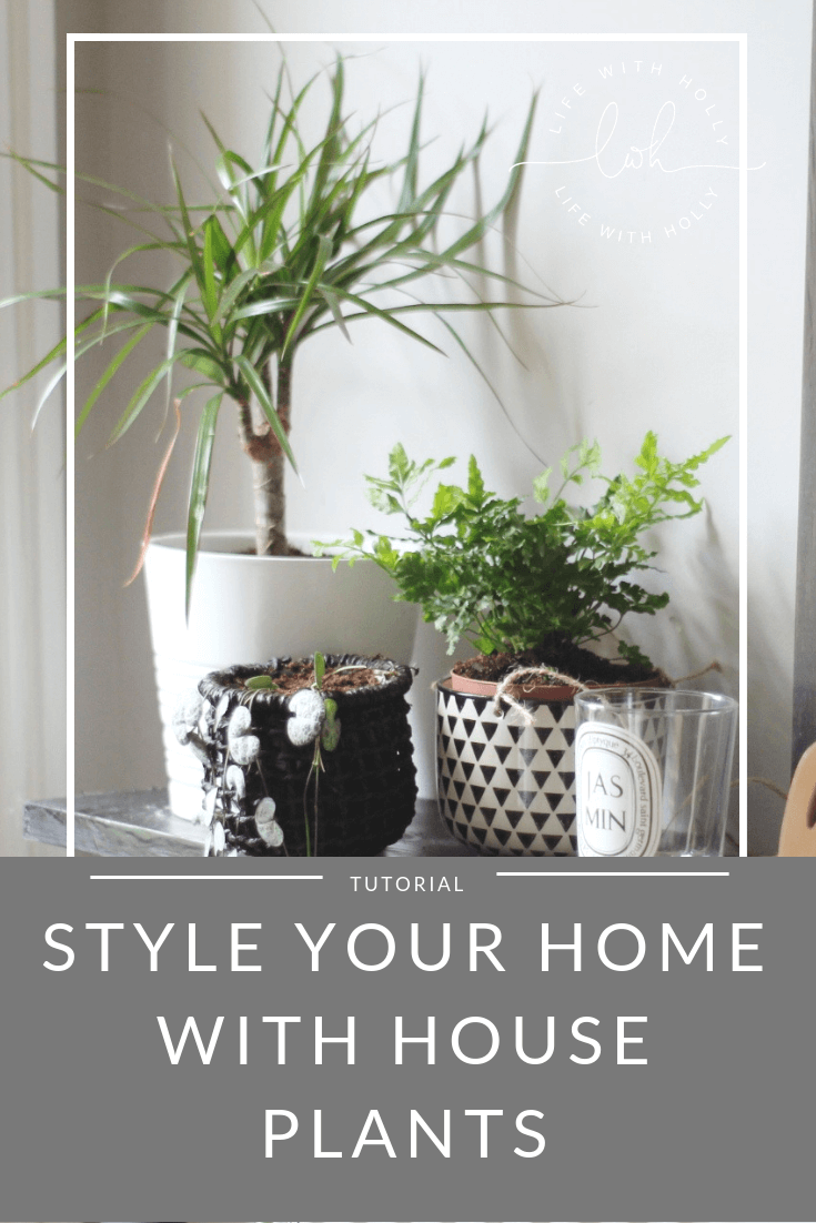 Style Your Home with House Plants by Life with Holly