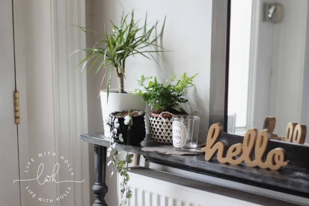 Style Your Home Using House Plants - Life with Holly